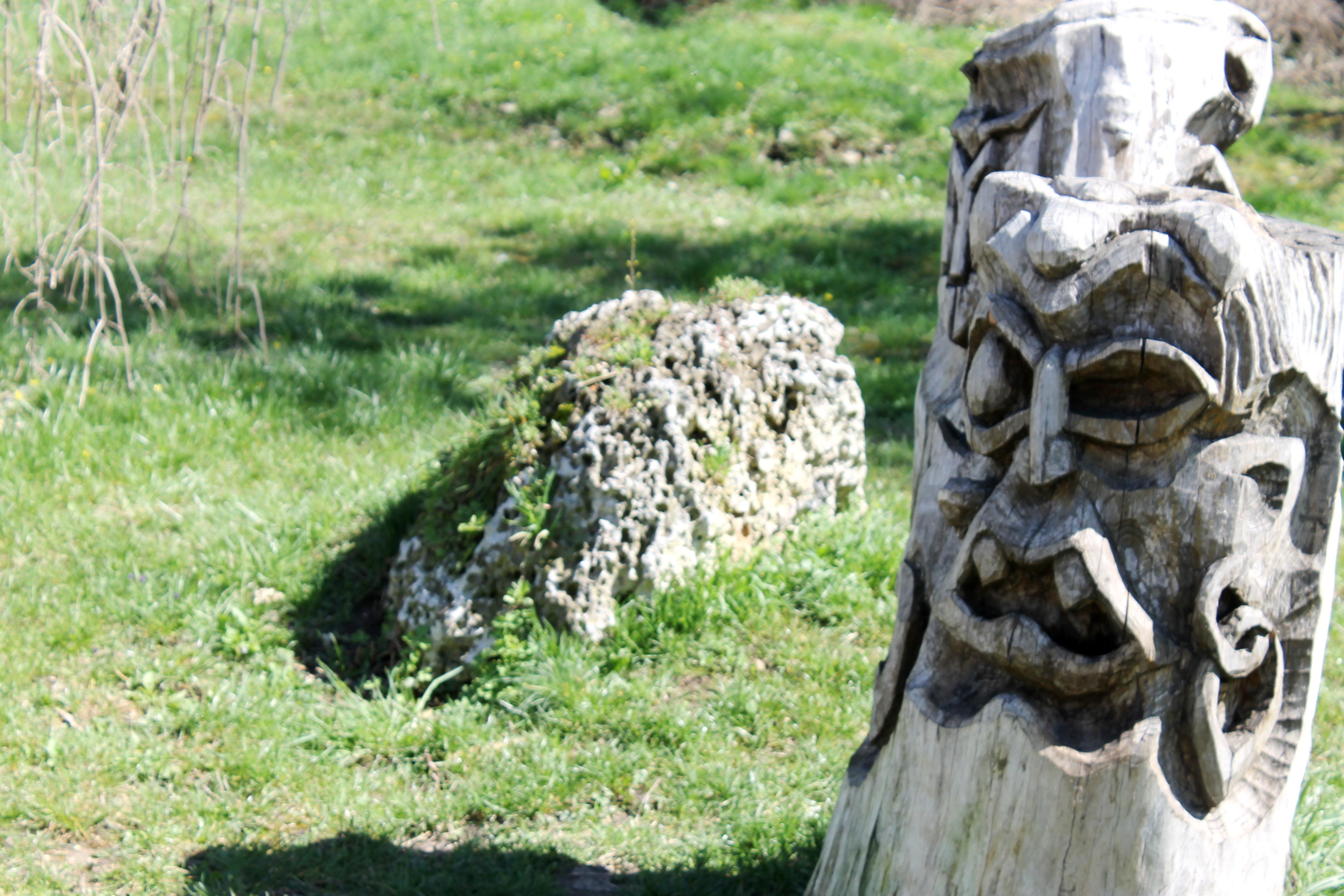 Дървесните скулптури на Даниел Бодичев. Снимка: Евгений Георгиев